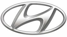 Hyundai naafdoppen