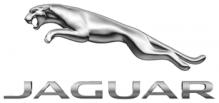 Jaguar naafdoppen